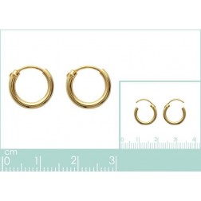 Anneau créoles 12 mm en plaqué or, fil 2 mm pour femme, Colibri