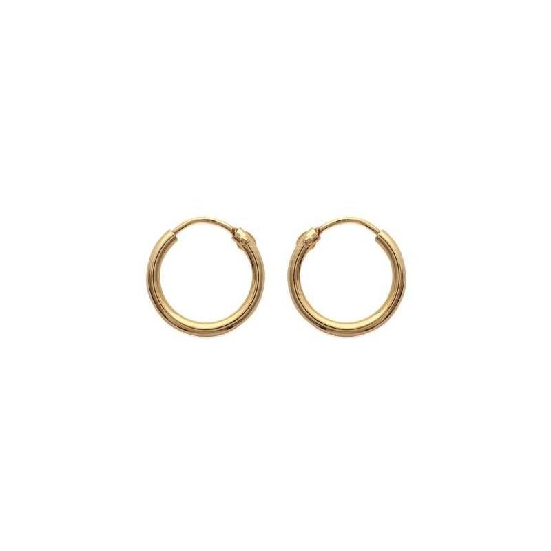 Boucles d'oreilles créoles 14 mm en plaqué or, fil 2 mm, Colibri