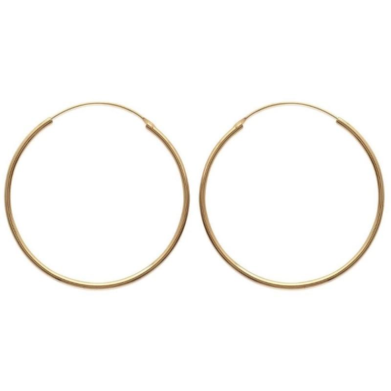 Boucles créoles diamètre 50 mm en plaqué or, fil 2 mm, Colibri