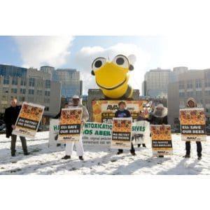 Avaaz victoire pour les abeilles