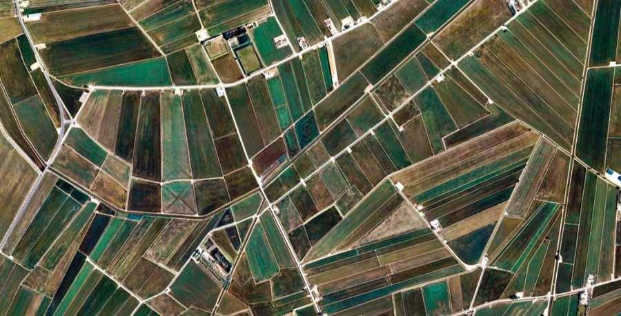 champs cultivés vus du ciel