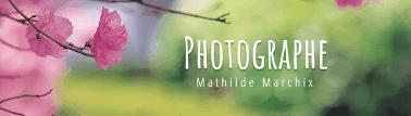 Vos photos chez Mathilde Marchix à Bédée