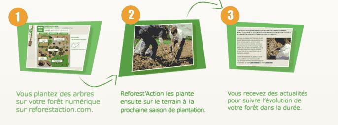 action humaniaire, planter un arbre